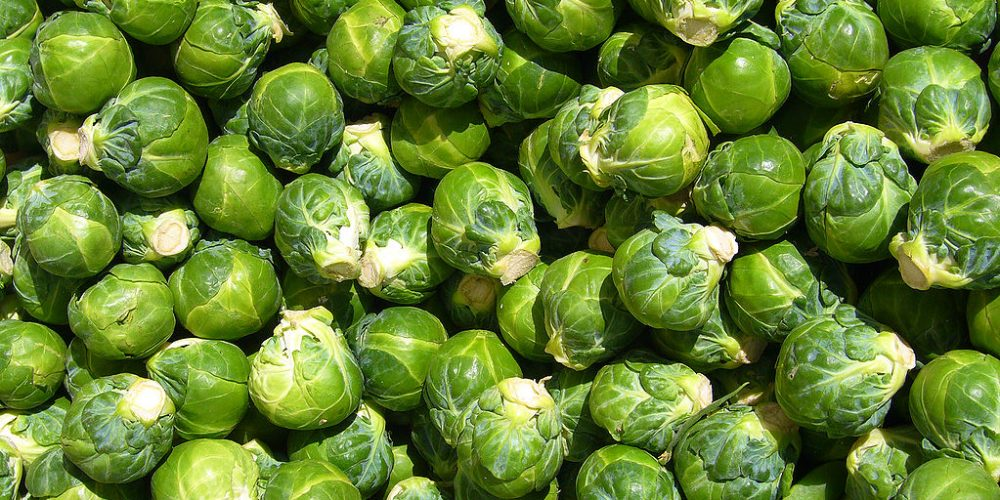 Brussels sprouts, as parachuted by a London theatre using Electro Kabuki.